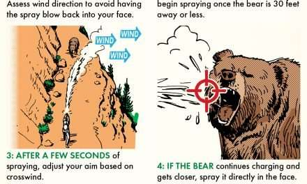 How to Effectively Use Bear Spray