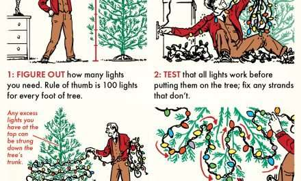 How to Put Lights on Your Christmas Tree Without Swearing Up a Storm