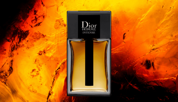 dior homme intense perfect male winter cologne