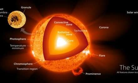 Massive Stars Mix Hydrogen in Their Cores, Causing Them to Pulse Every few Hours or Days
