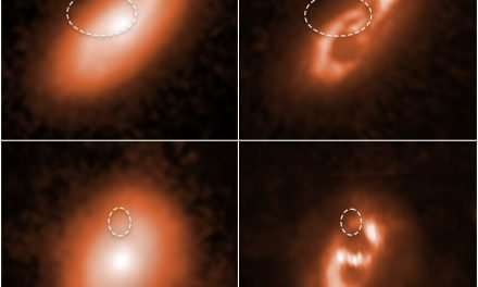 Hubble Has Tracked Down the Source of 5 Different Fast Radio Bursts