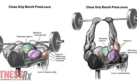 Want Bigger Arms and a Massive Chest?