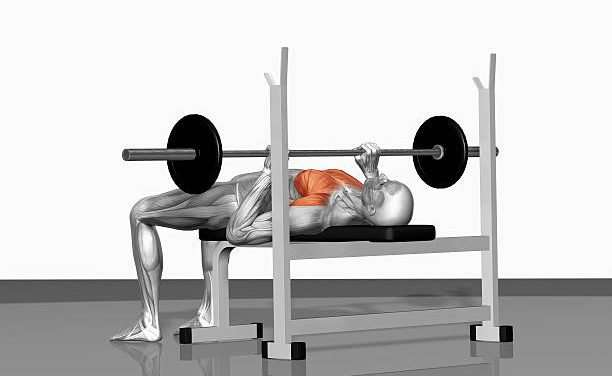 Bench Press Boot Camp