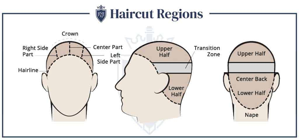 Infographic - Haircut Regions