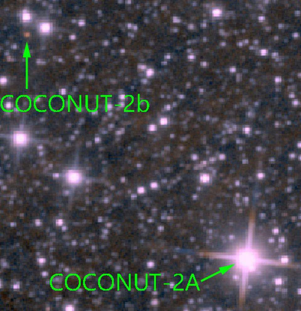 Different spectra of the Coconut 2 system.
